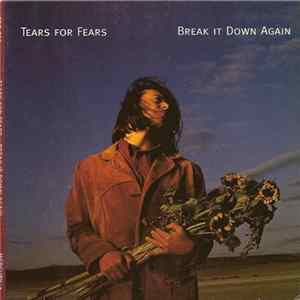 Tears For Fears - Break It Down Again Mp3