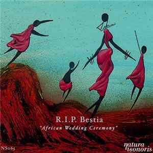 R.I.P. Bestia - African Wedding Ceremony Mp3